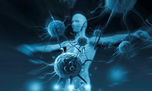 Hệ miễn dịch của tế chống ung thư