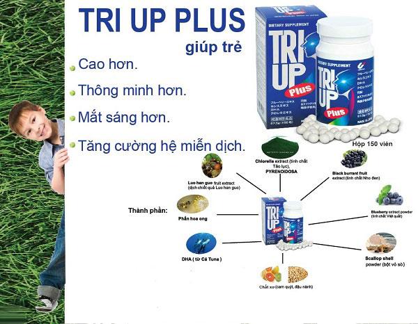 Các hoạt chất hình thành nên thực phẩm chức năng bổ não Triup Plus