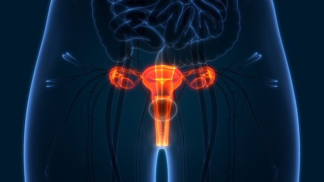 virus HPV là nguyên nhân gây ra bệnh ung thư cho phụ nữ