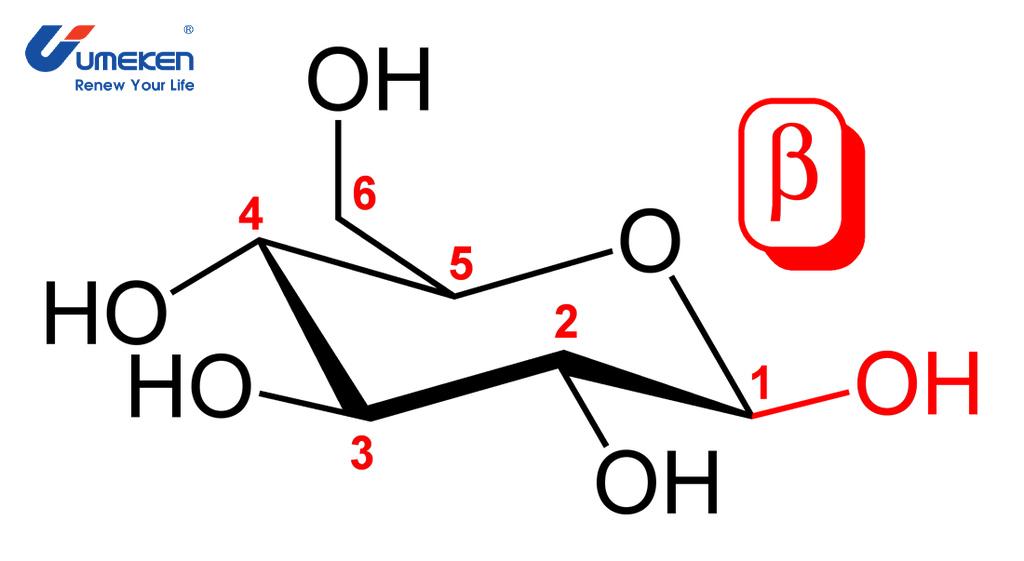 Các phân tử cấu tạo nên Beta Glucan