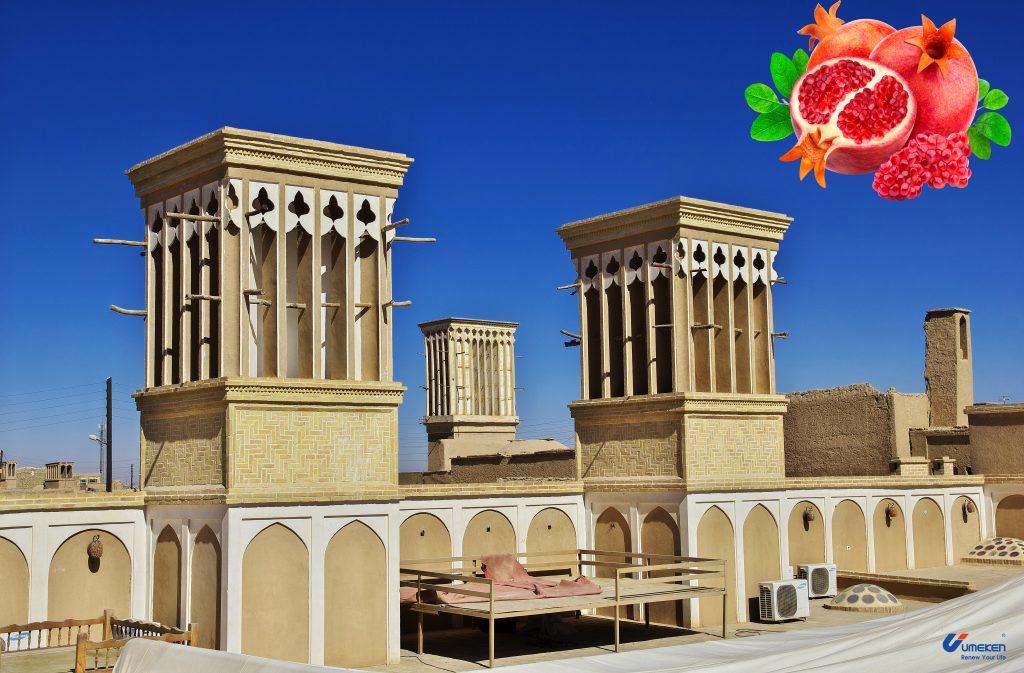 Lựu trong nền văn hóa Iran